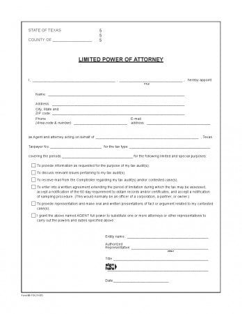 Free Texas Limited Power Of Attorney Form For Tax Audits  Adobe Pdf